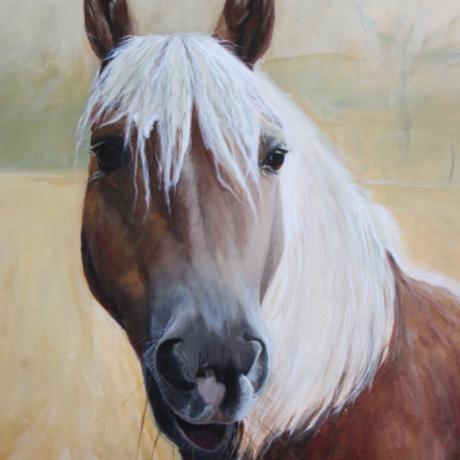 Mijn paard portret Lani