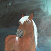 Mijn paard Lani